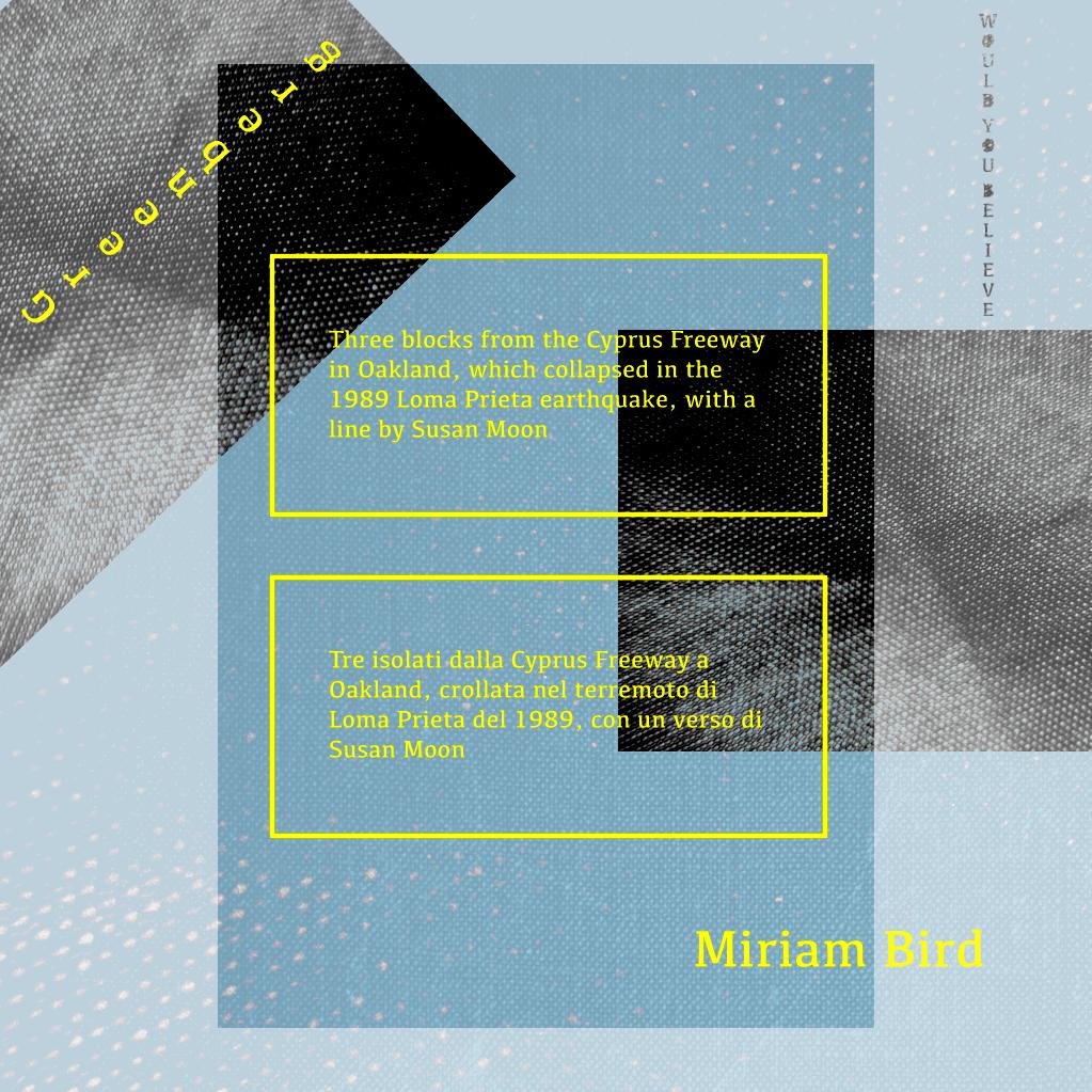 Miriam Bird Greenberg, the other world, american poetry, contemporary poetry, traduzioni, poesia dell'altrove, poesia americana, l'altro mondo, silvia girardi, antiniska pozzi